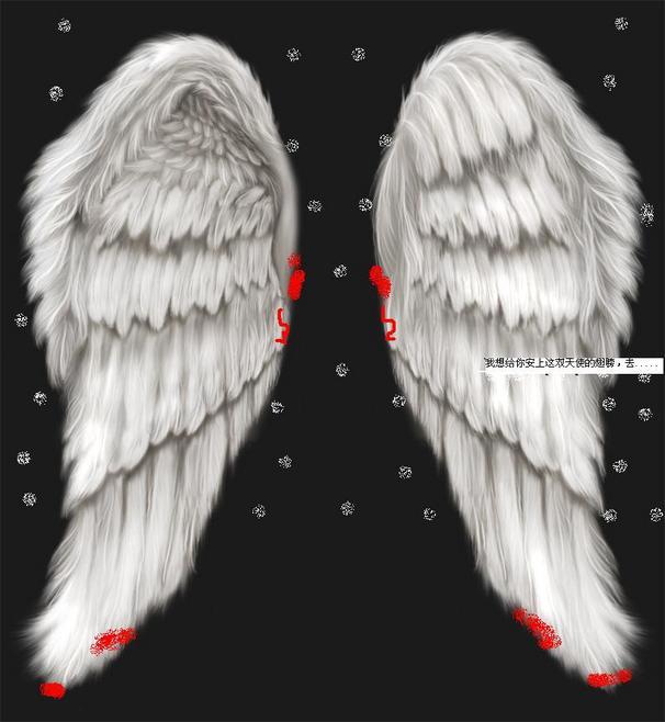 天使的翅膀,天使的翅膀歌词,天使的翅膀吉他谱,天使的翅膀非主流