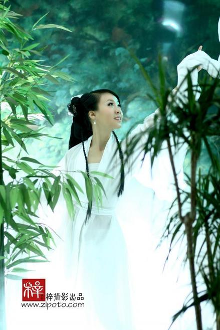 月光下的凤尾竹施光南 月光下的凤尾竹简谱 月光下的凤尾竹